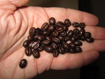 Tanzainan Peaberry Coffee